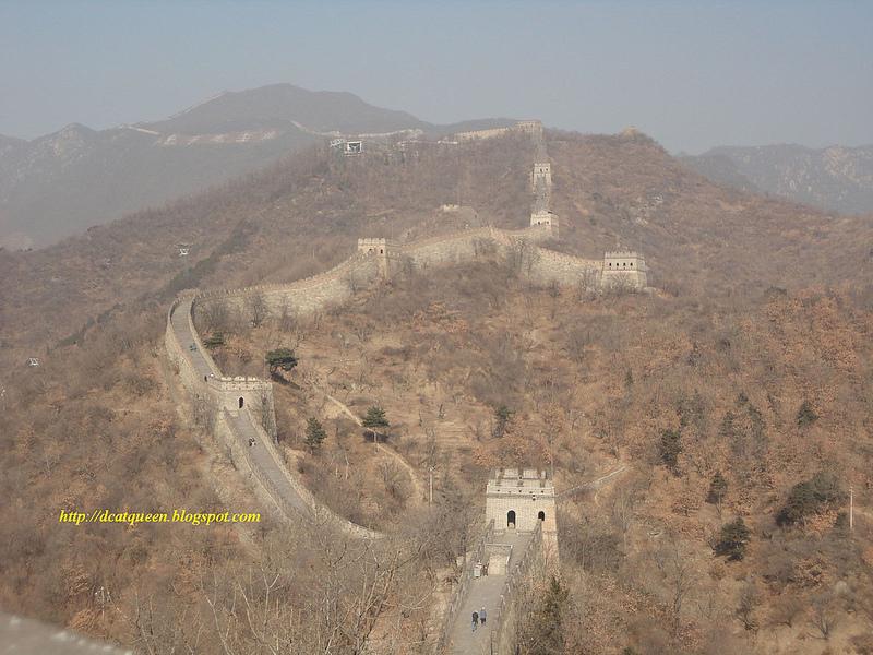 Hutan dan Tembok Besar