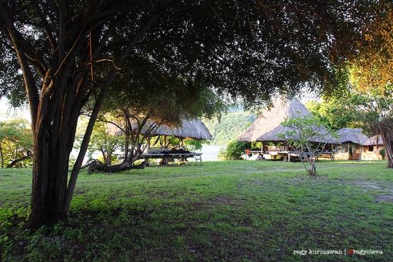 La Petite Kepa Dive Resort dibangun dengan gaya tradisional Alor. Konsep green living benar-benar diterapkan disini: wajib hemat air, listrik menggunakan tenaga surya, dan dilarang keras buang sampah sembarangan.