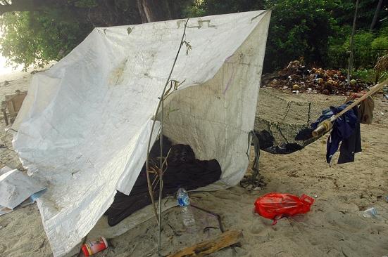 Shelter sweet shelter
